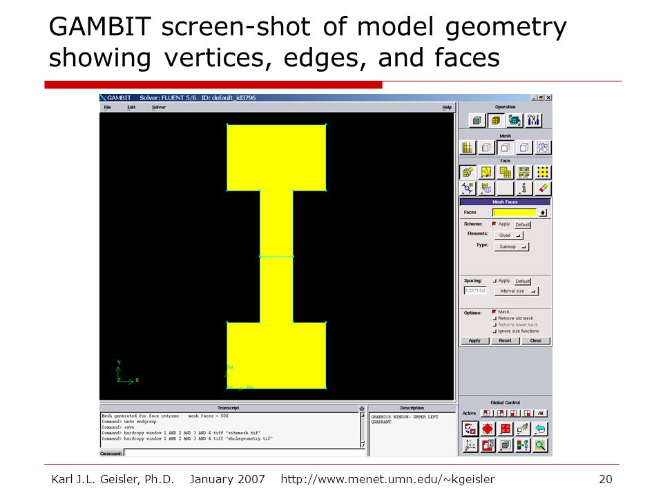 GAMBIT screen-shot of model geometry showing vertices, edges, and faces