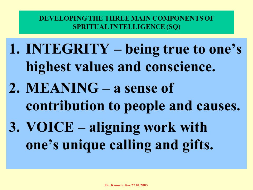 DEVELOPING THE THREE MAIN COMPONENTS OF SPRITUAL INTELLIGENCE (SQ)