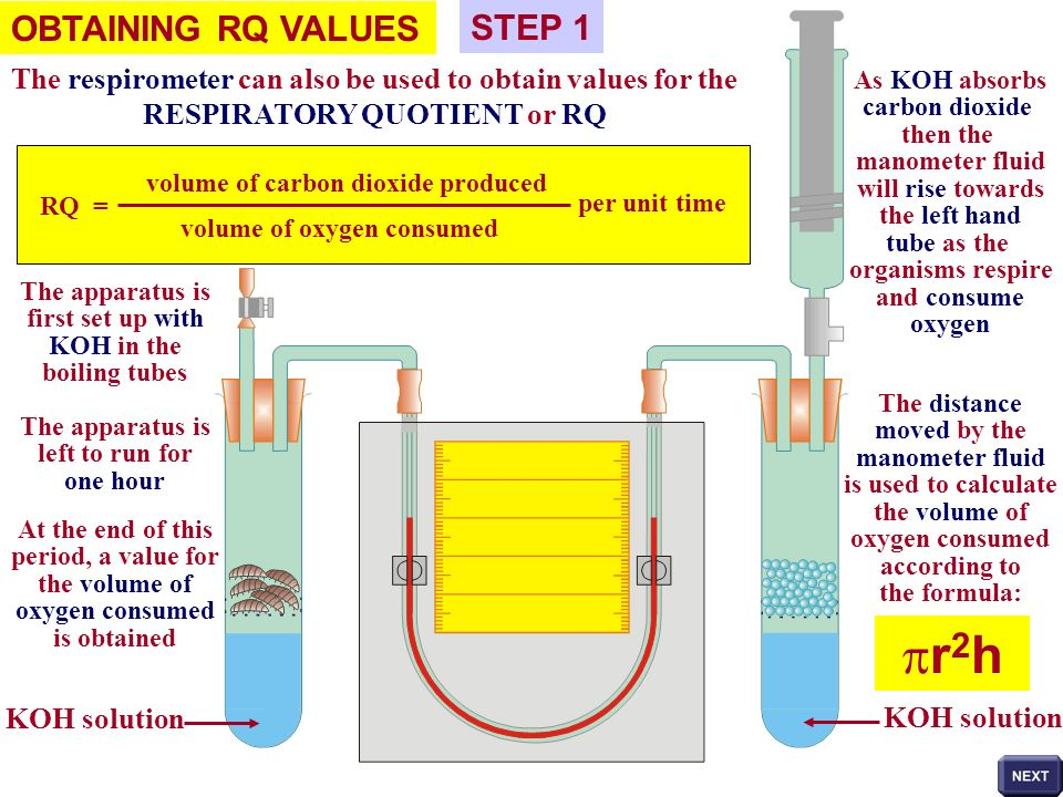 pr2h OBTAINING RQ VALUES STEP 1