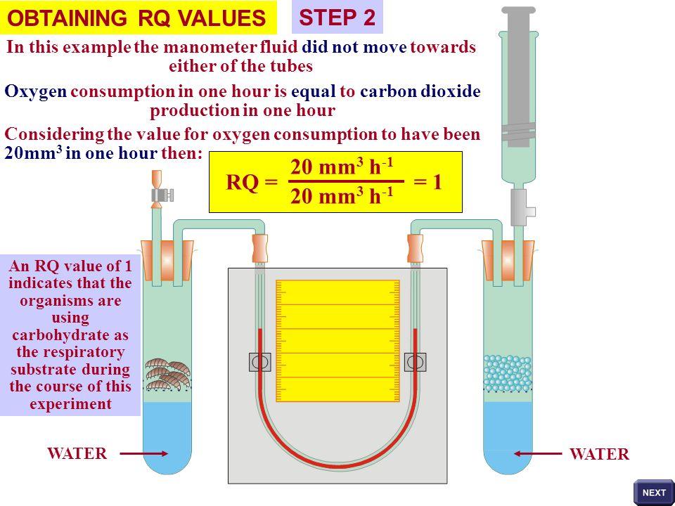 OBTAINING RQ VALUES STEP 2 RQ = 20 mm3 h-1 = 1