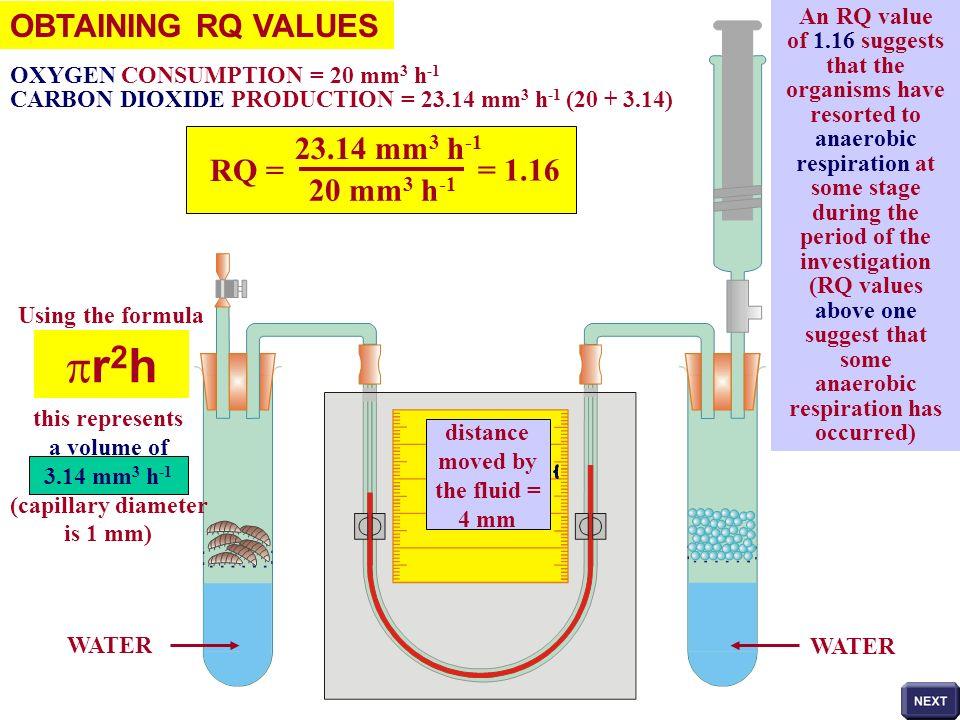 pr2h OBTAINING RQ VALUES 23.14 mm3 h-1 RQ = = 1.16 20 mm3 h-1