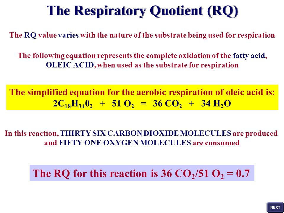 respiratory quotient Synonyms for respiratory quotients in free thesaurus antonyms for respiratory quotients 1 word related to respiratory quotient: ratio what are synonyms for.