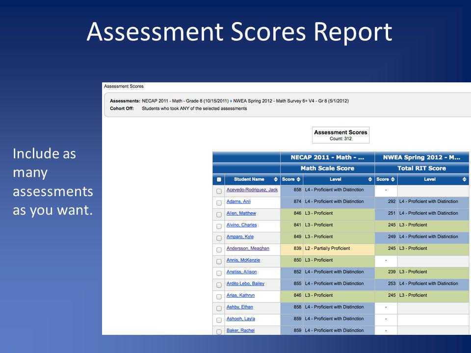 Assessment Scores Report