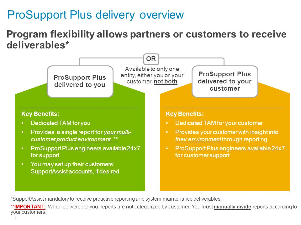 ProSupport Plus delivery overview