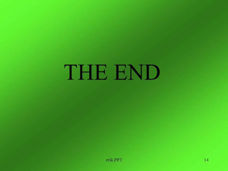 THE END erik.PPT