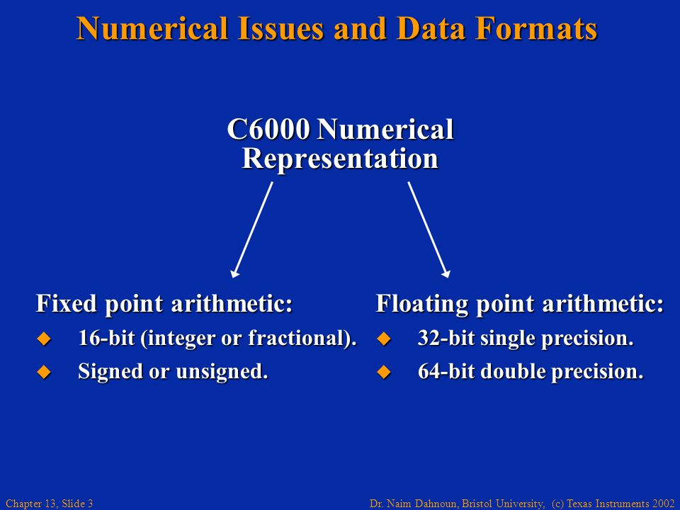 Numerical Issues and Data Formats