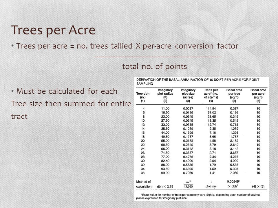 Trees per Acre