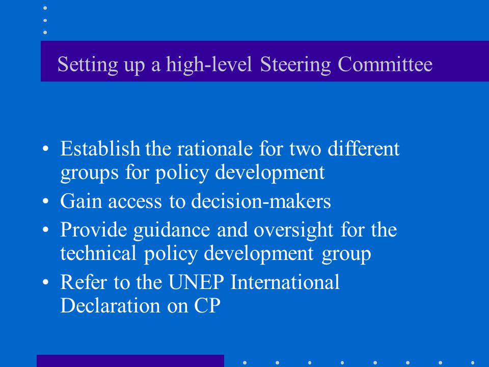 Setting up a high-level Steering Committee