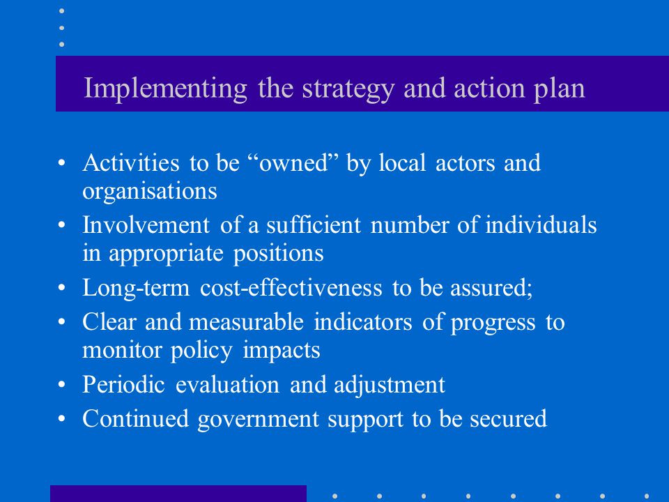 Implementing the strategy and action plan