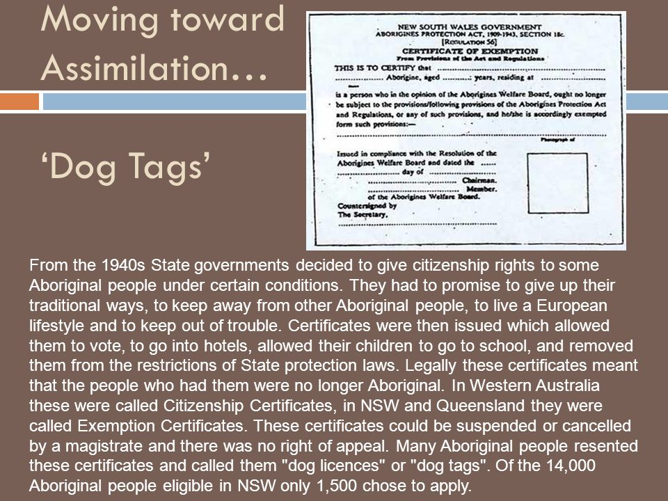 Moving toward Assimilation… 'Dog Tags'