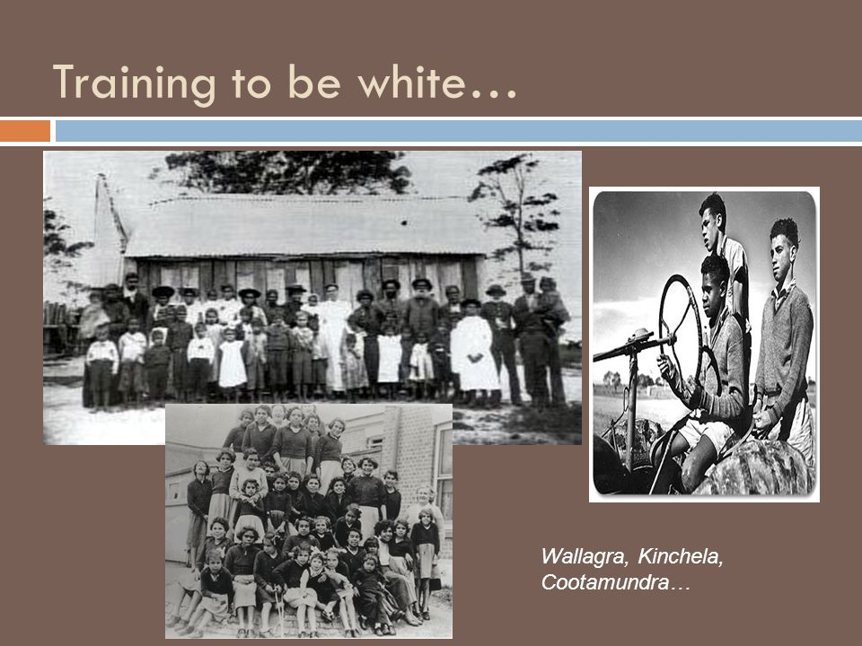 Training to be white… Wallagra, Kinchela, Cootamundra…
