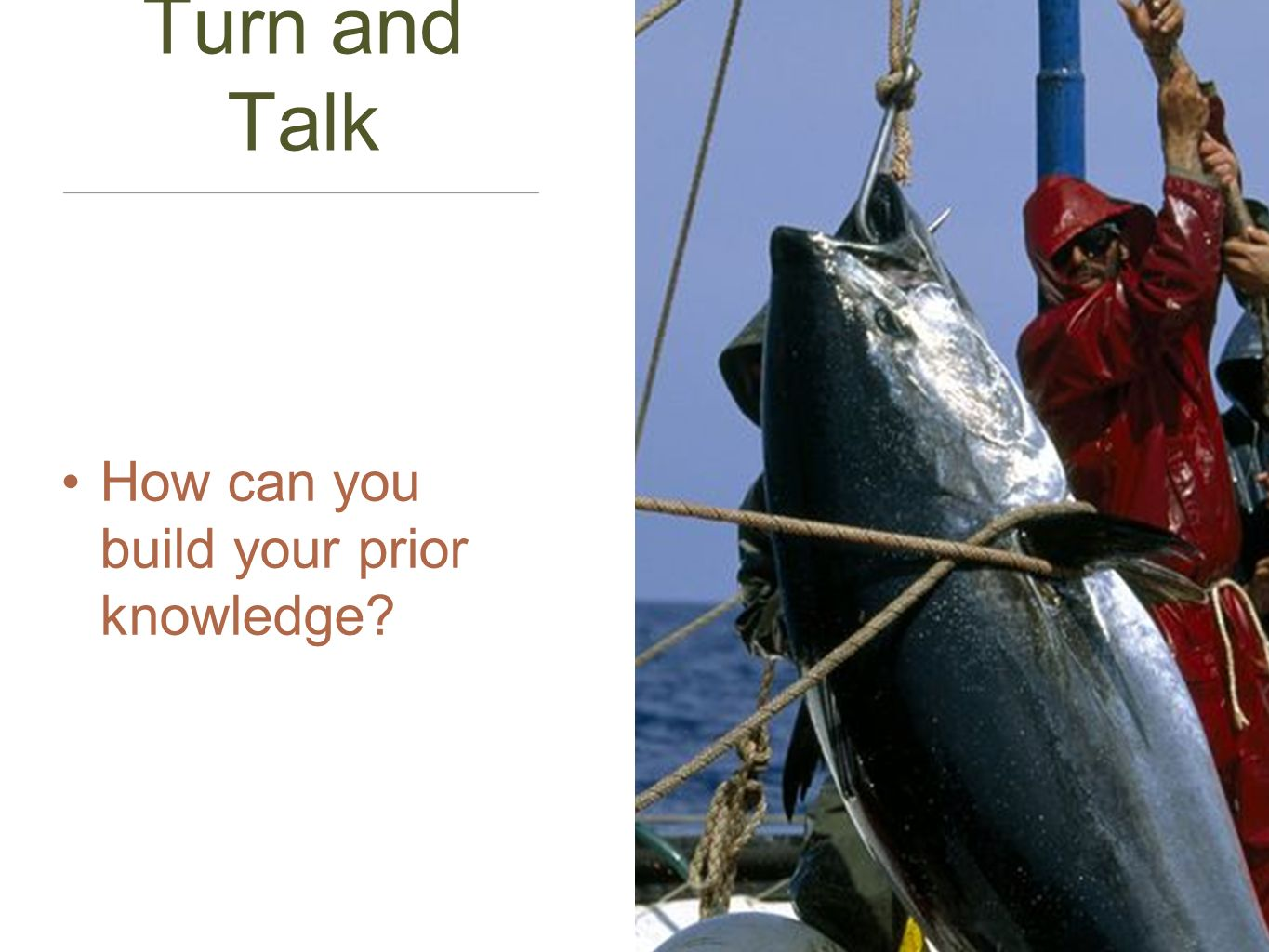 Turn and Talk How can you build your prior knowledge