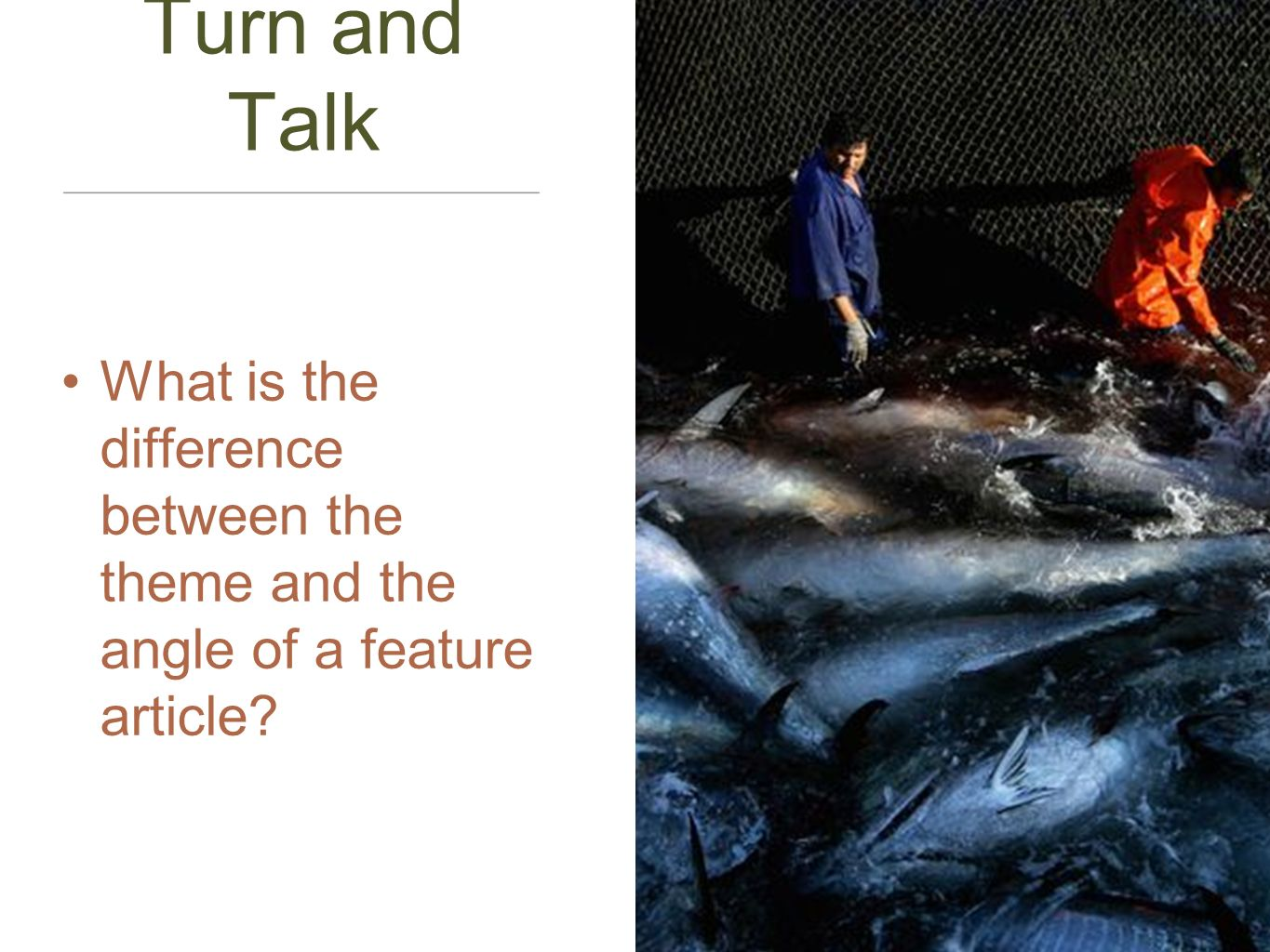 Turn and Talk What is the difference between the theme and the angle of a feature article