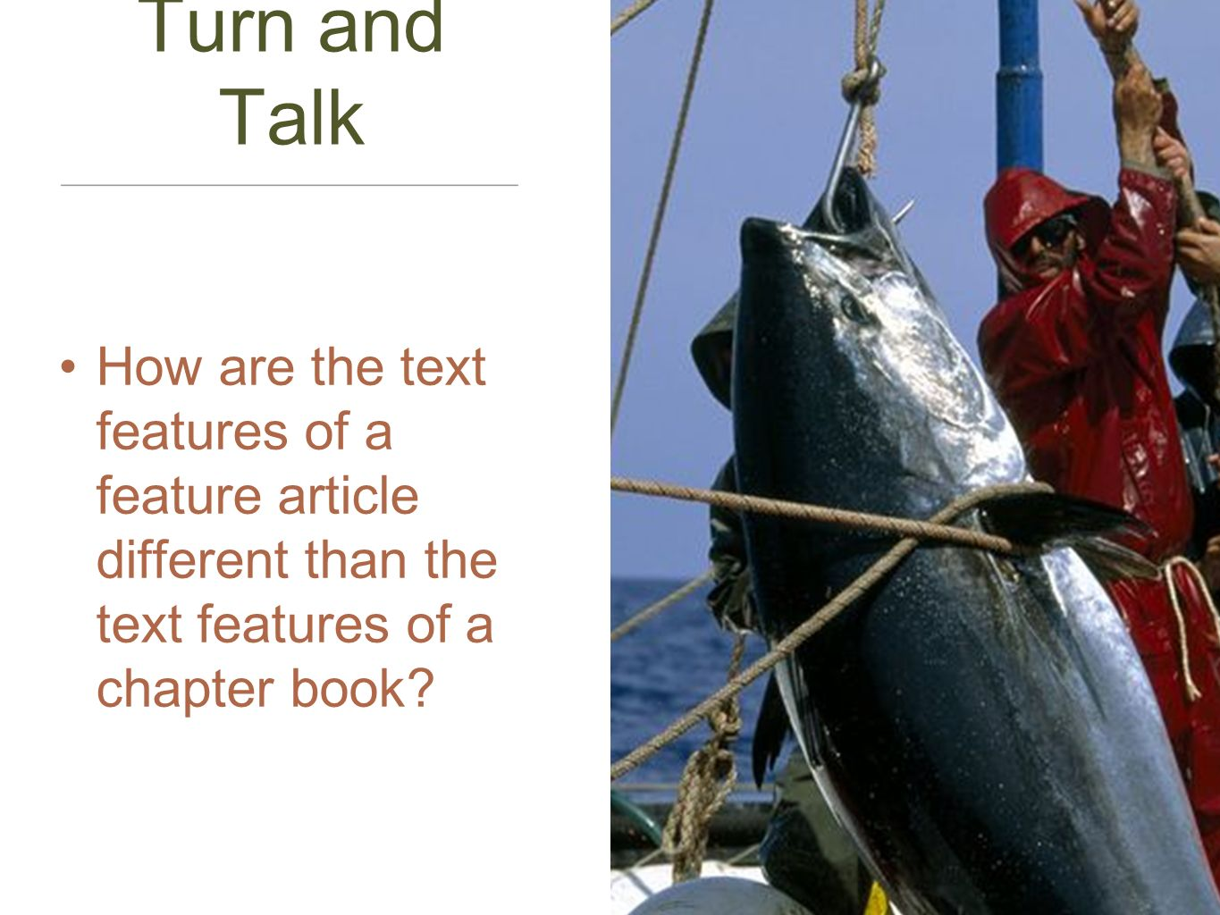 Turn and Talk How are the text features of a feature article different than the text features of a chapter book