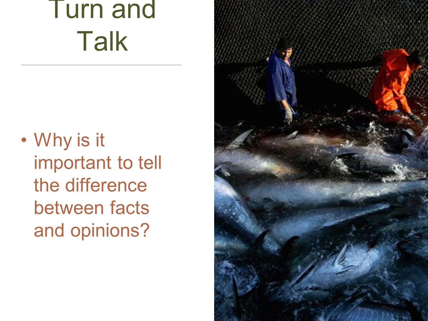 Turn and Talk Why is it important to tell the difference between facts and opinions