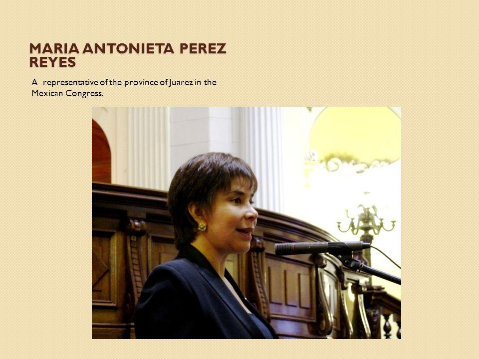 Maria Antonieta Perez Reyes