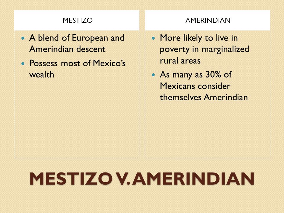 MESTIZO V. AMERINDIAN A blend of European and Amerindian descent