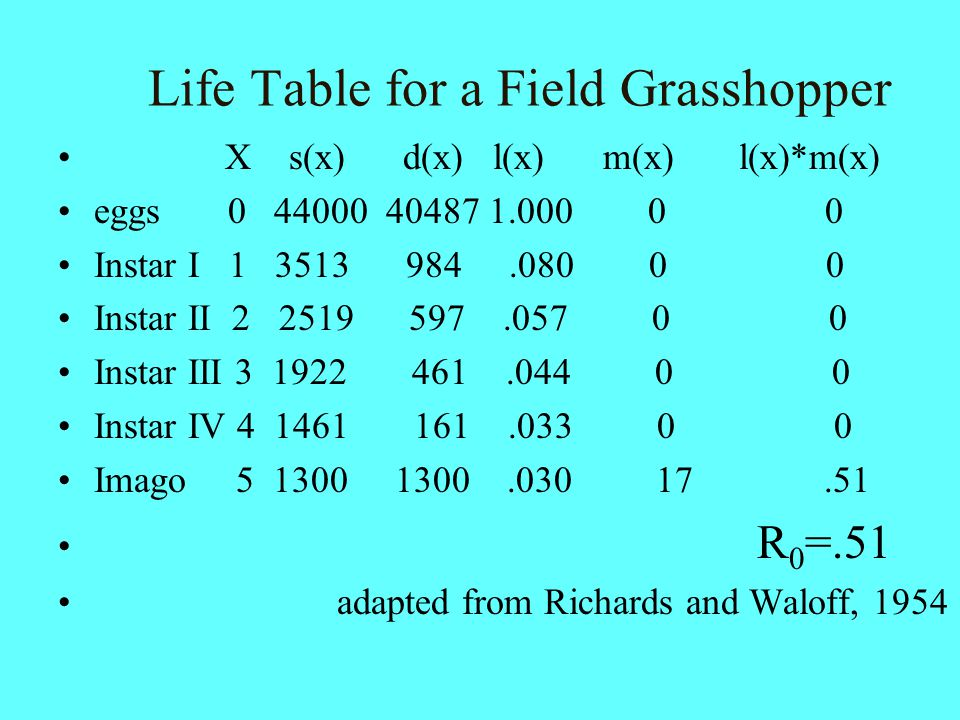 Life Table for a Field Grasshopper
