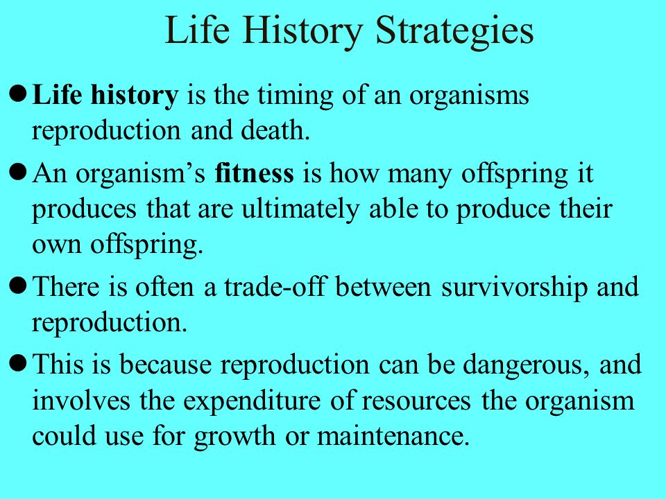 Life History Strategies