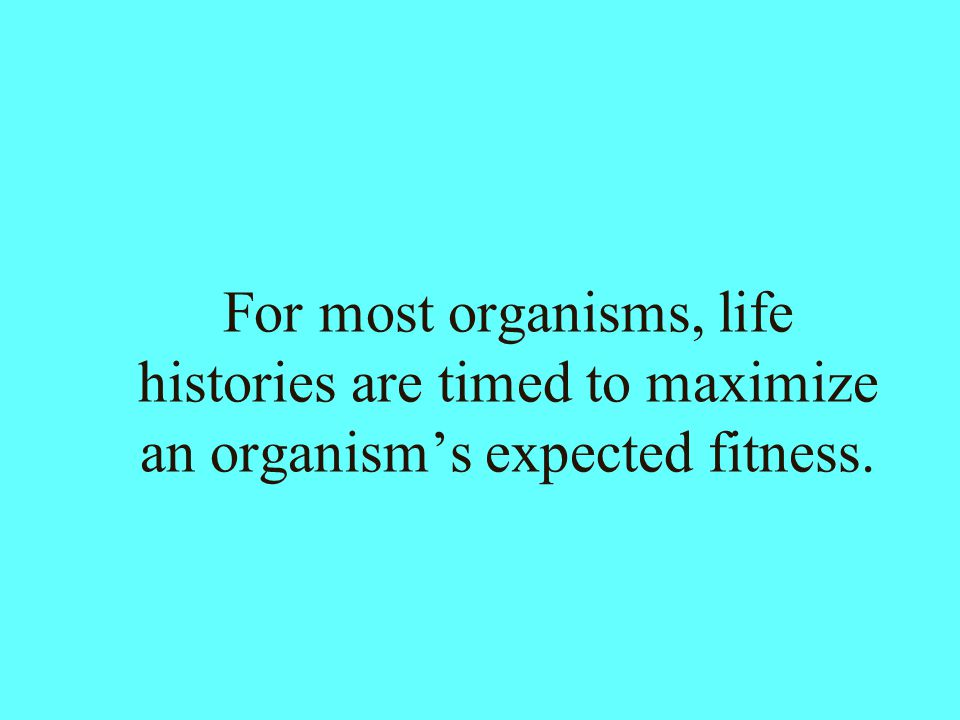 For most organisms, life histories are timed to maximize an organism's expected fitness.