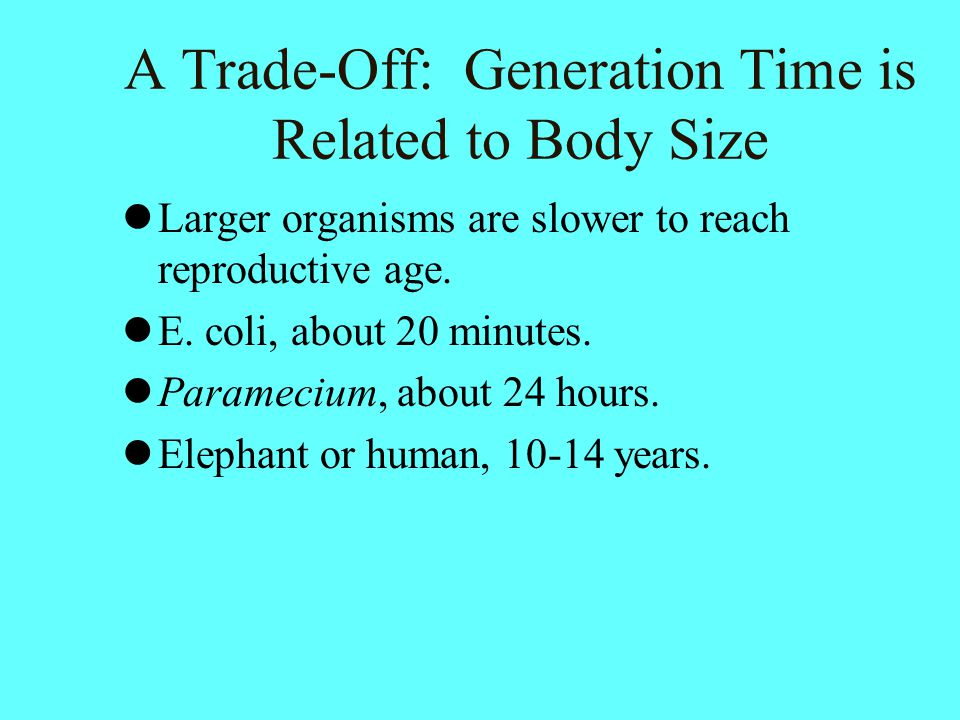 A Trade-Off: Generation Time is Related to Body Size