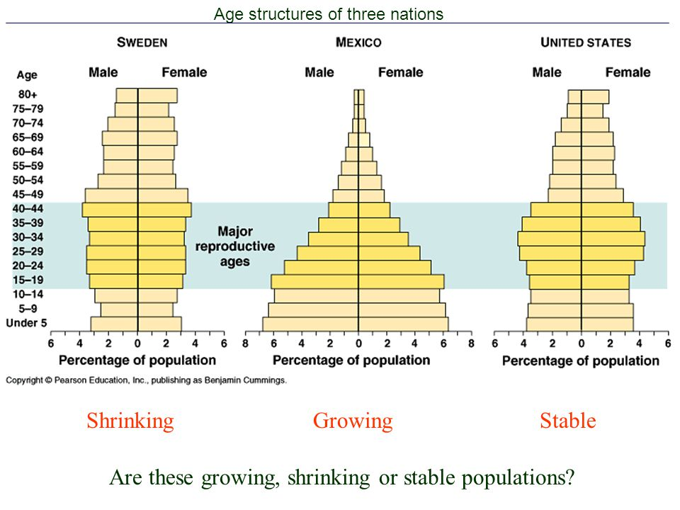 Age structures of three nations
