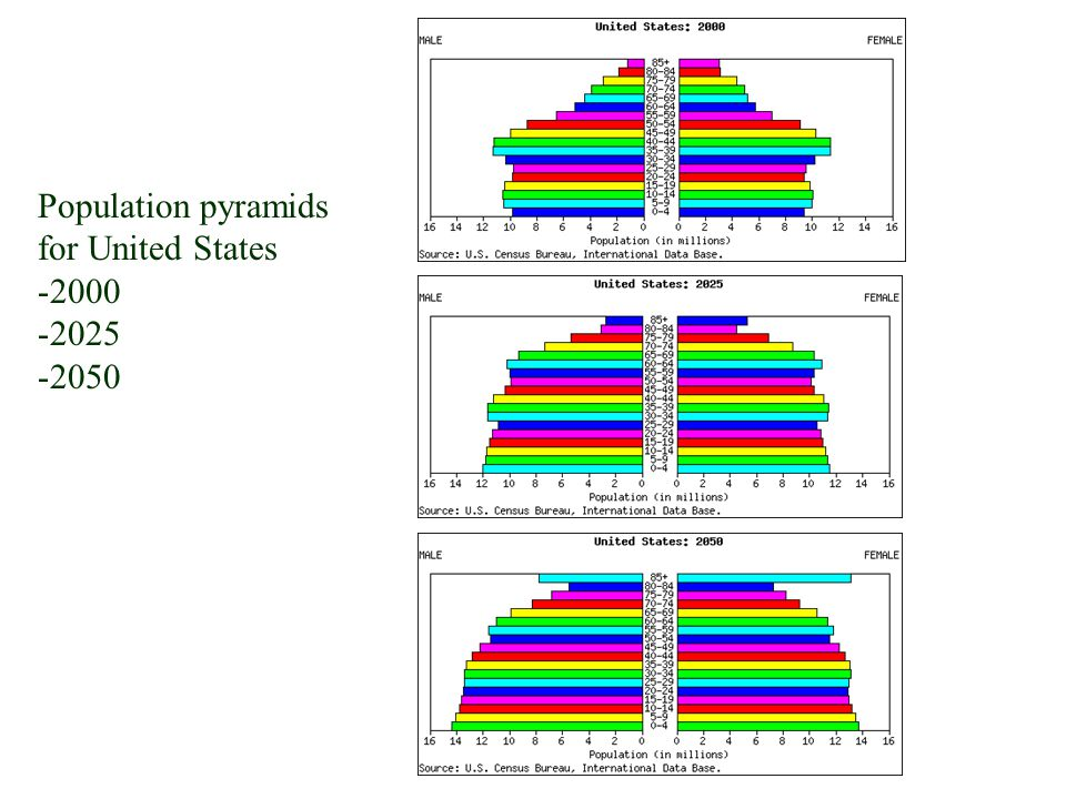 Population pyramids for United States 2000 2025 2050
