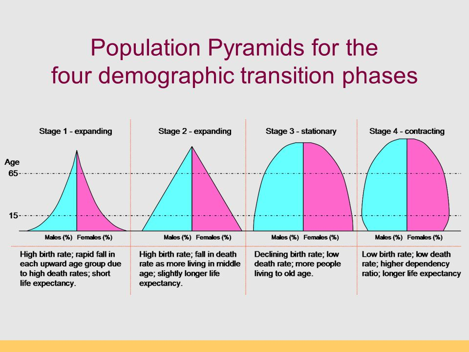 Population Pyramids for the four demographic transition phases