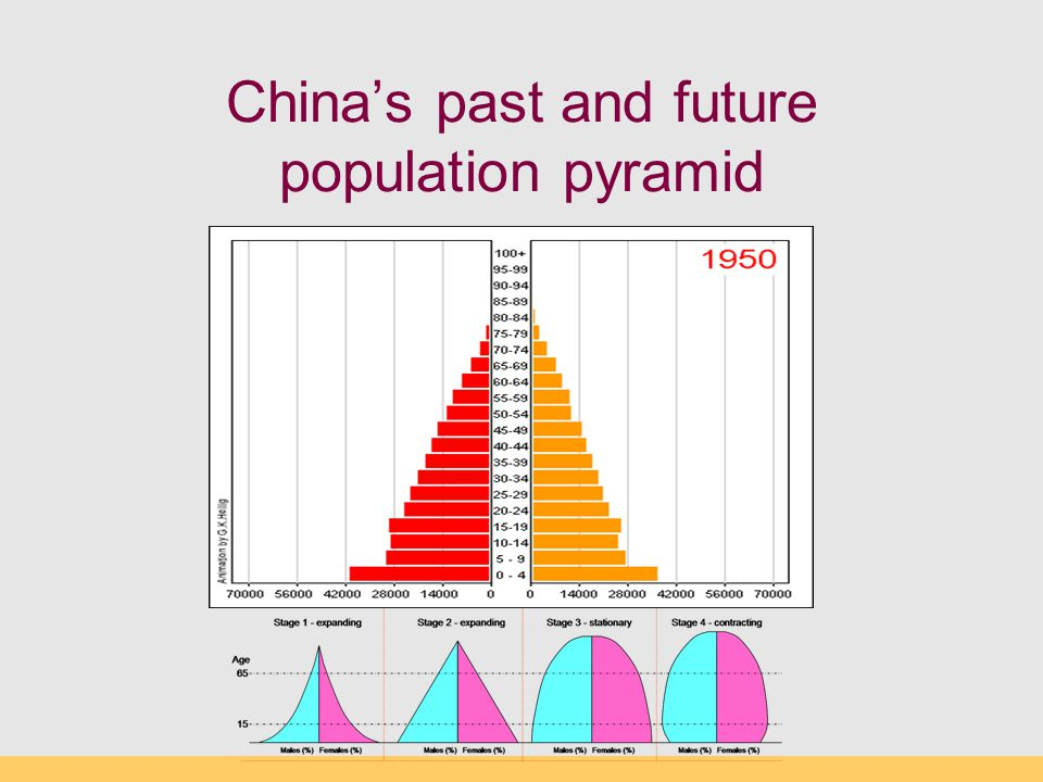 China's past and future population pyramid