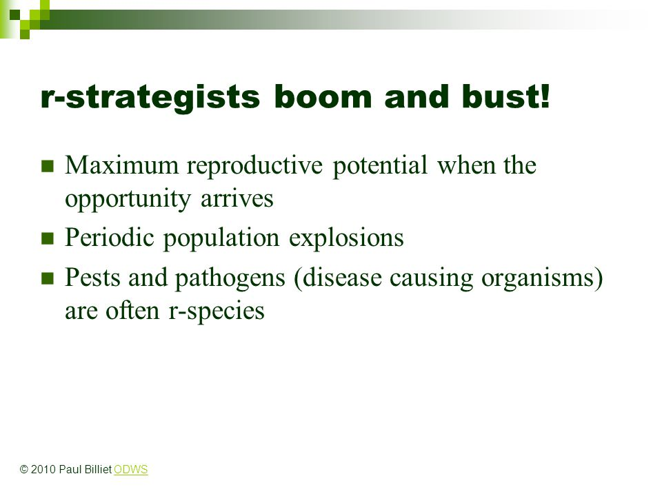 r-strategists boom and bust!