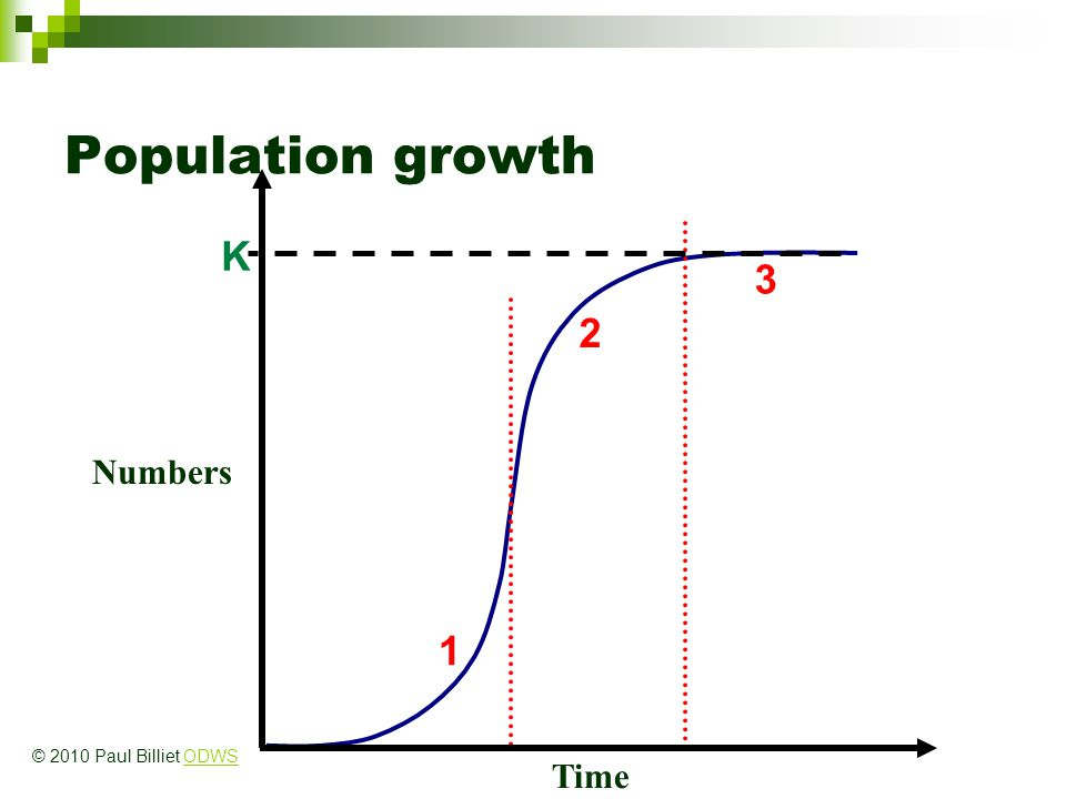 Population growth Numbers Time K 3 2 1 © 2010 Paul Billiet ODWS
