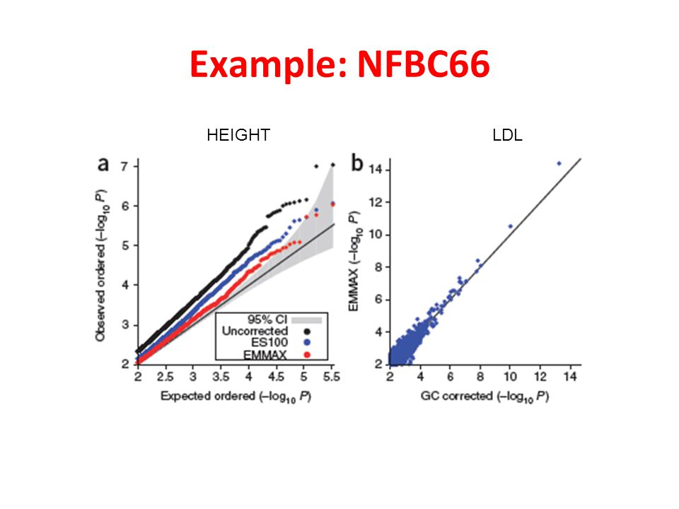 Example: NFBC66 HEIGHT LDL