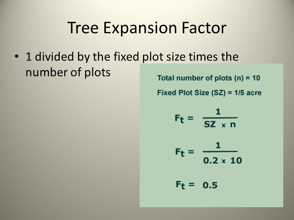 Tree Expansion Factor 1 divided by the fixed plot size times the number of plots