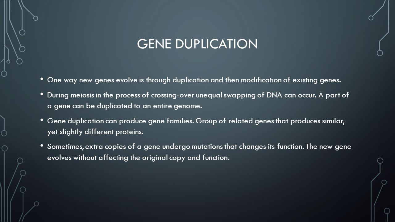 Gene Duplication One way new genes evolve is through duplication and then modification of existing genes.