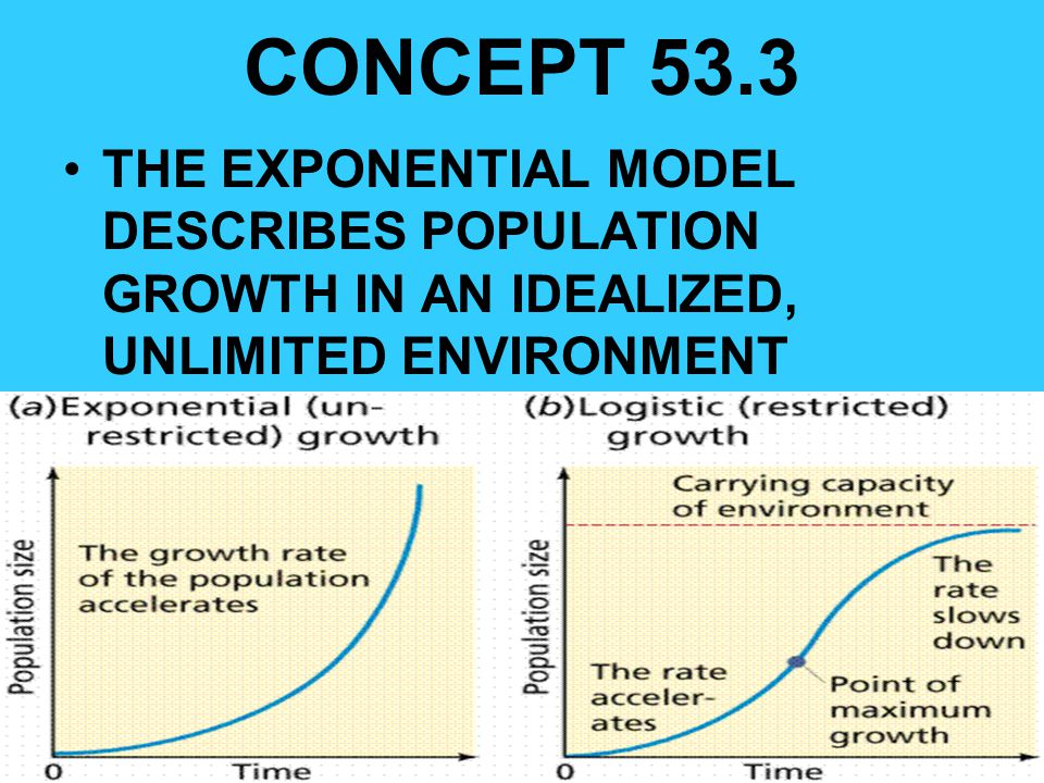 CONCEPT 53.3 THE EXPONENTIAL MODEL DESCRIBES POPULATION GROWTH IN AN IDEALIZED, UNLIMITED ENVIRONMENT.