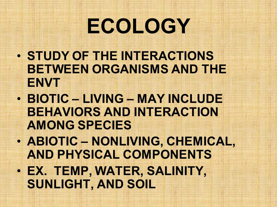 ECOLOGY STUDY OF THE INTERACTIONS BETWEEN ORGANISMS AND THE ENVT
