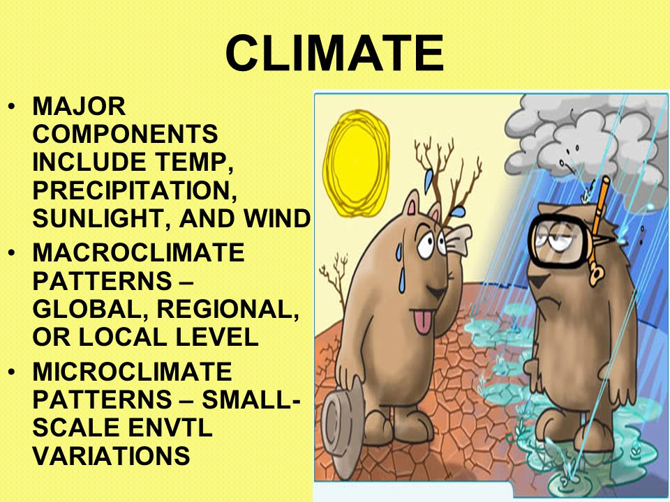 CLIMATE MAJOR COMPONENTS INCLUDE TEMP, PRECIPITATION, SUNLIGHT, AND WIND. MACROCLIMATE PATTERNS – GLOBAL, REGIONAL, OR LOCAL LEVEL.