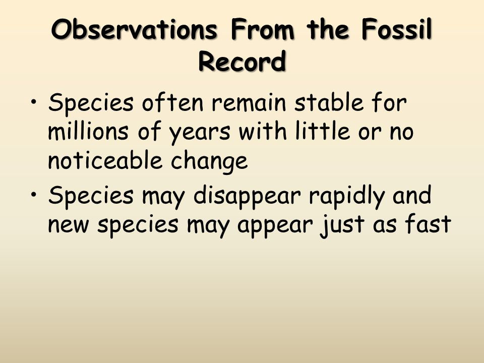 Observations From the Fossil Record