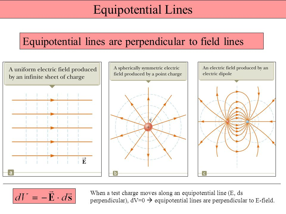 Equipotential Lines Equipotential lines are perpendicular to field lines.