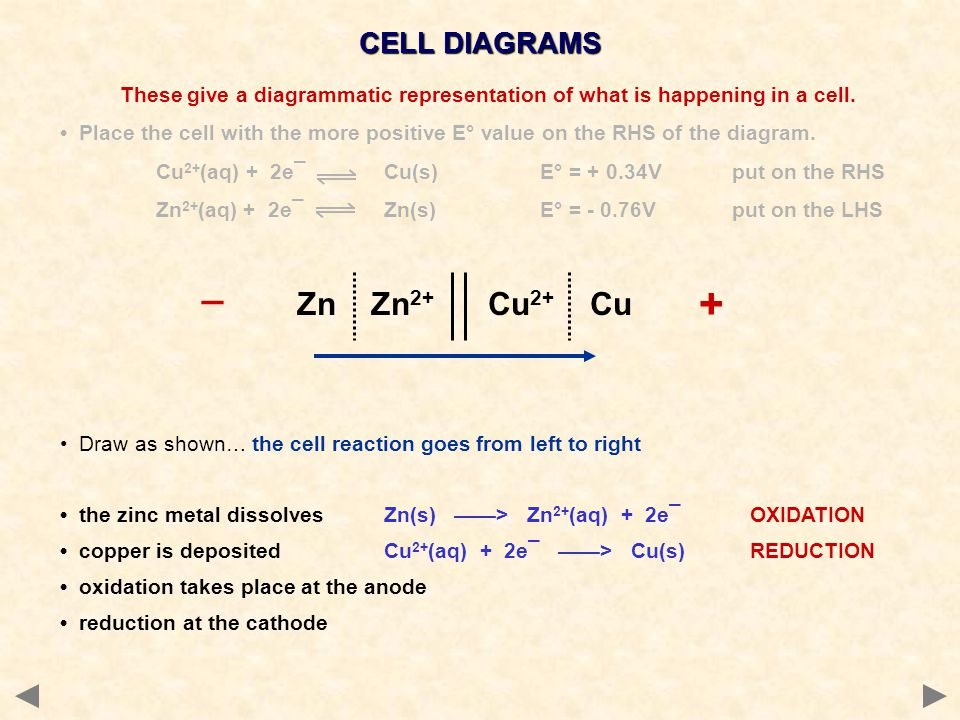 + _ Zn Zn2+ Cu2+ Cu CELL DIAGRAMS