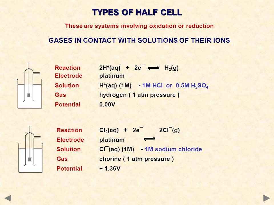 TYPES OF HALF CELL GASES IN CONTACT WITH SOLUTIONS OF THEIR IONS