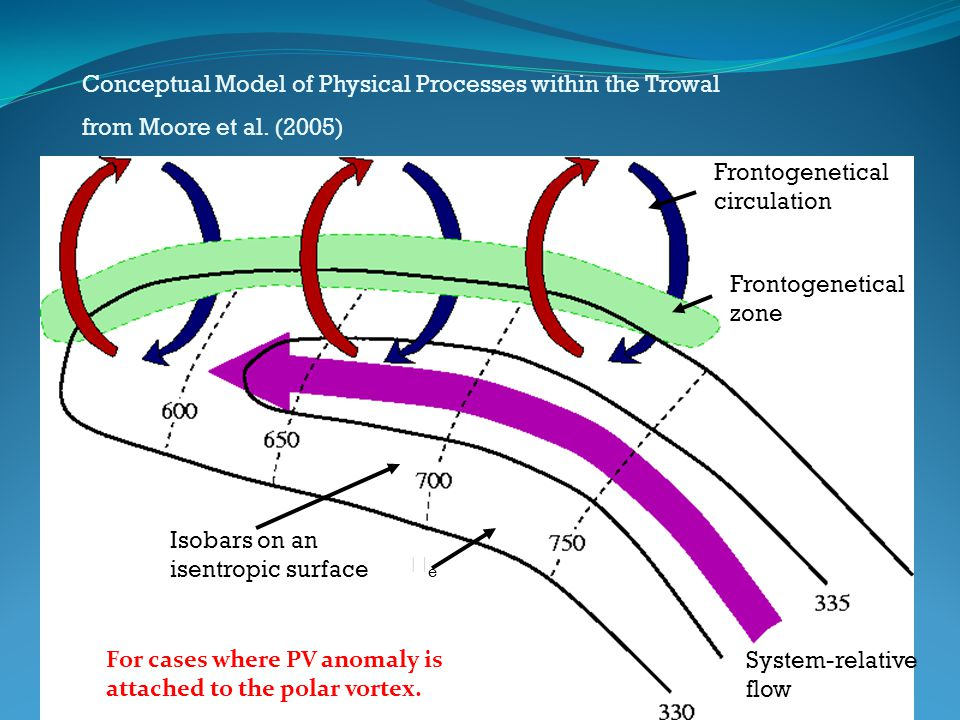 Conceptual Model of Physical Processes within the Trowal