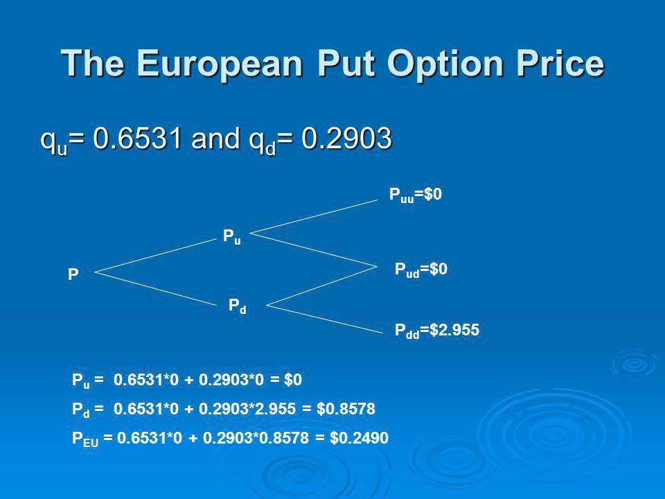 The European Put Option Price