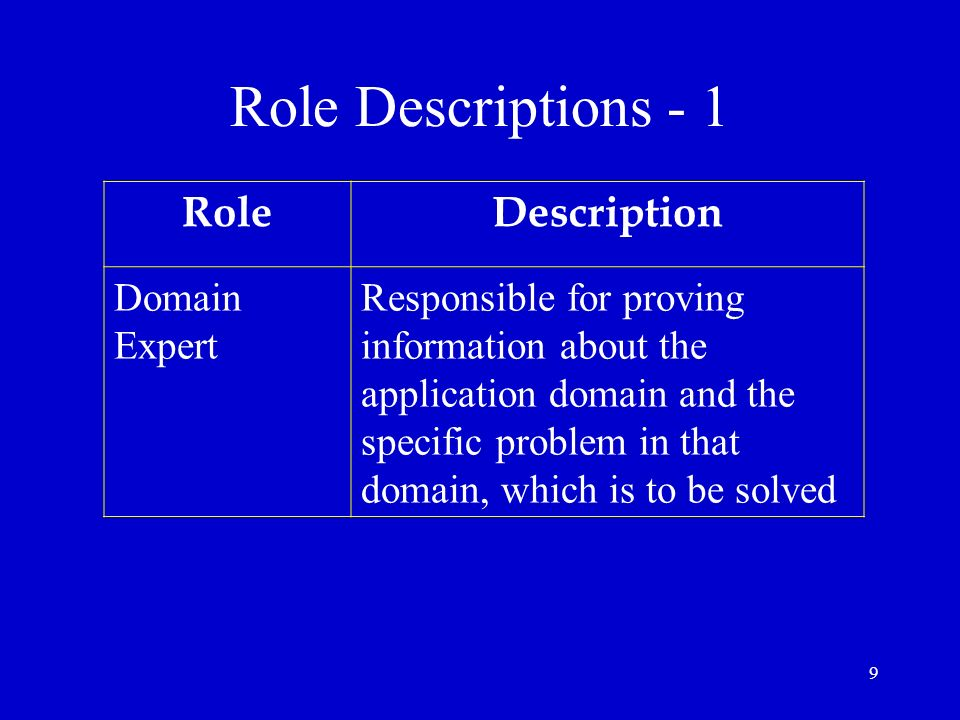 Role Descriptions - 1 Role Description Domain Expert