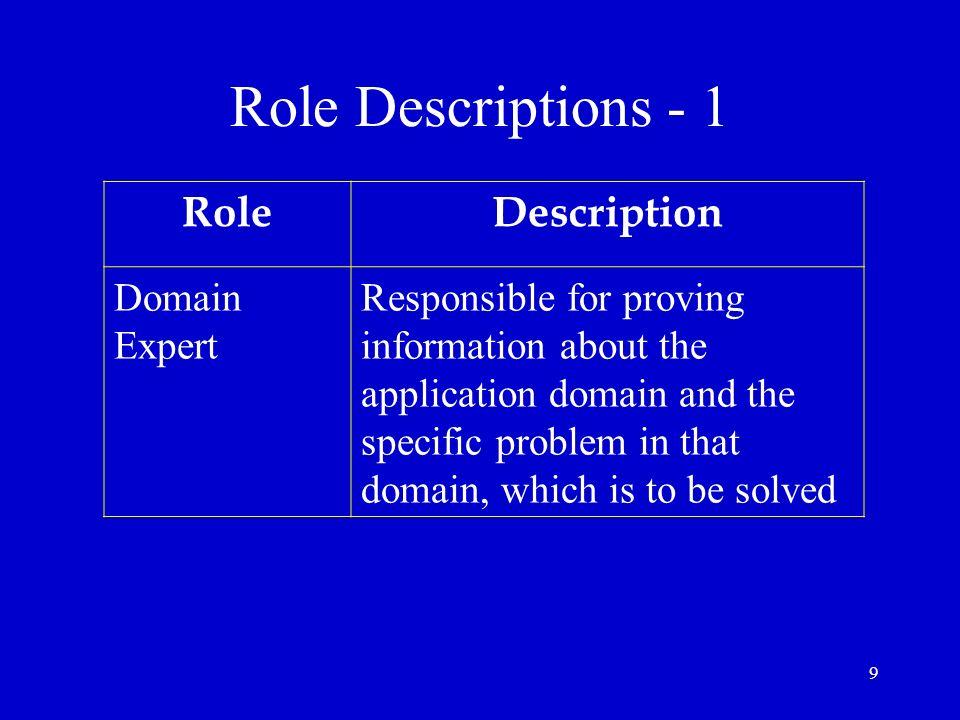Role Descriptions - 1 Role Description Domain Expert