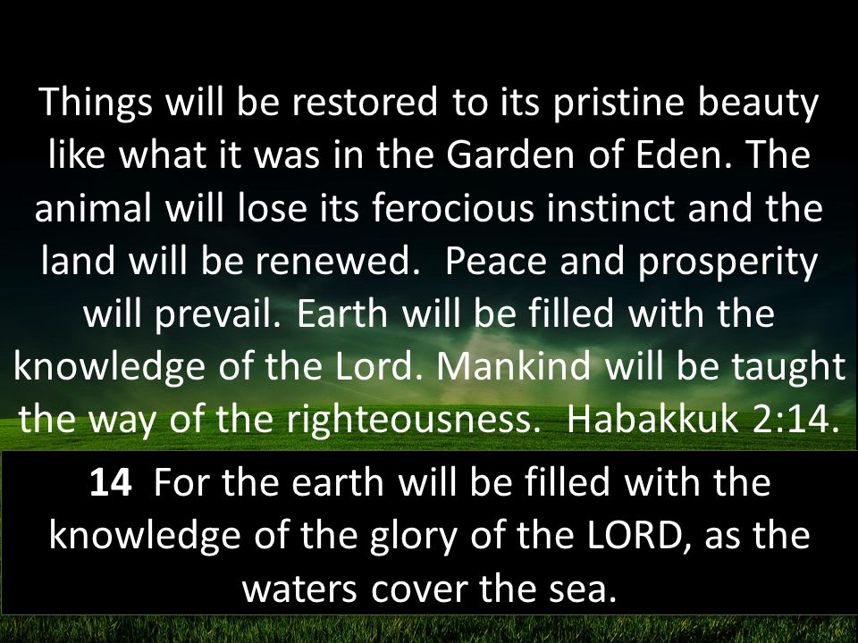 Things will be restored to its pristine beauty like what it was in the Garden of Eden. The animal will lose its ferocious instinct and the land will be renewed. Peace and prosperity will prevail. Earth will be filled with the knowledge of the Lord. Mankind will be taught the way of the righteousness. Habakkuk 2:14.