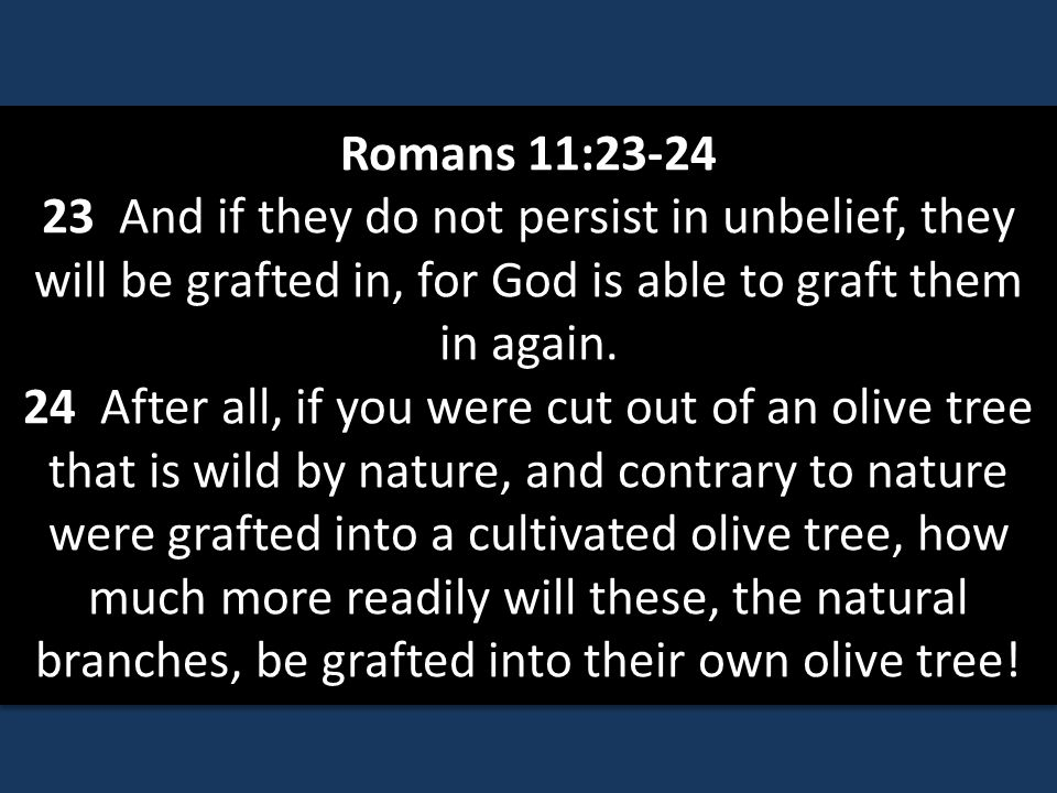 Romans 11:23-24 23 And if they do not persist in unbelief, they will be grafted in, for God is able to graft them in again.
