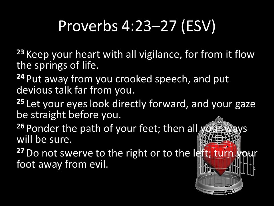 Proverbs 4:23–27 (ESV) 23 Keep your heart with all vigilance, for from it flow the springs of life.