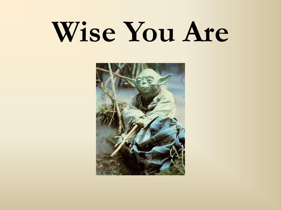 Wise You Are