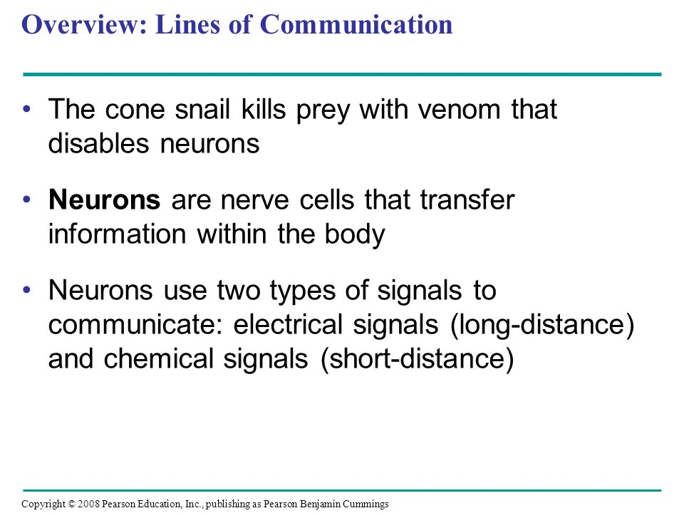 Overview: Lines of Communication